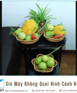 Ro May Tu Nhien Dan Thu Cong Hinh Canh Hoa Gio May Khong Quai Dung Trai Cay Do An Vat 3 noithatsangtao2t.com