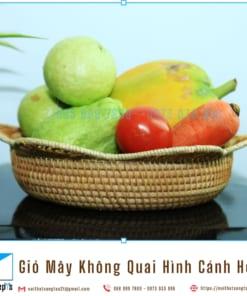 Ro May Tu Nhien Dan Thu Cong Hinh Canh Hoa Gio May Khong Quai Dung Trai Cay Do An Vat noithatsangtao2t.com